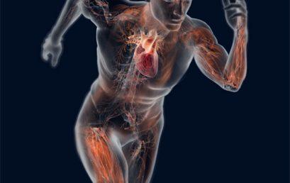 Exercício Físico e Saúde