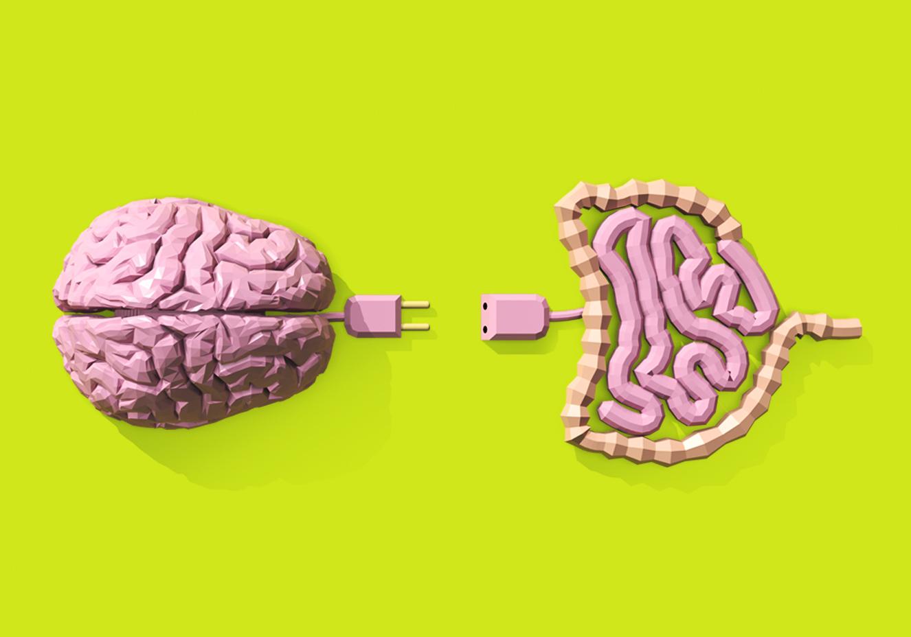 Ciclo da vida e longevidade: efeito da alimentação sobre o cérebro