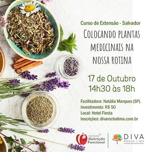 Salvador:  Colocando plantas medicinais na nossa rotina