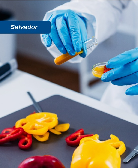Salvador:  RDC 331e IN 60/ANVISA/2019 e Interpretação das Análises Microbiológicas de Alimentos e as novas Legislações