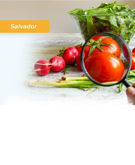 Salvador: Especialização em Segurança dos Alimentos em Serviços de Alimentação