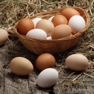 Surto de Listeria por derivados de ovos é registrado nos EUA